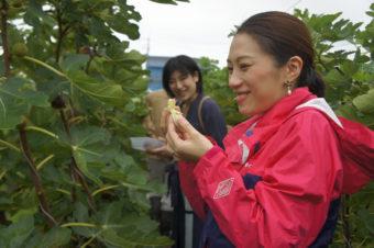 【お知らせ】オフィスの健康を食で支援。「Farm to Office Kobe」がスタート